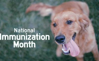 Happy National Immunization Awareness Month!